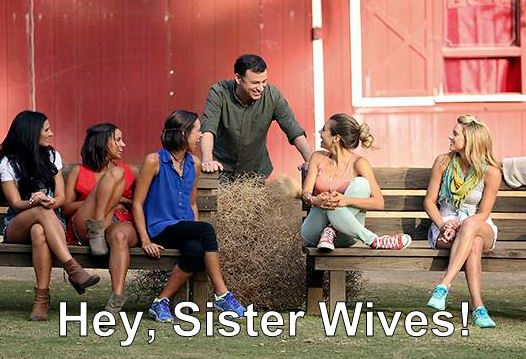 Hey, Sister Wives